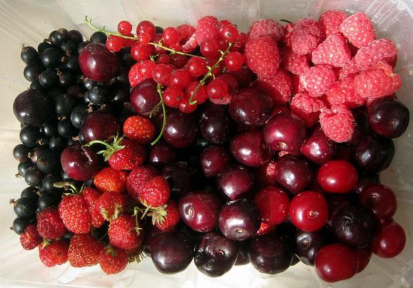 няшные фрукты фото