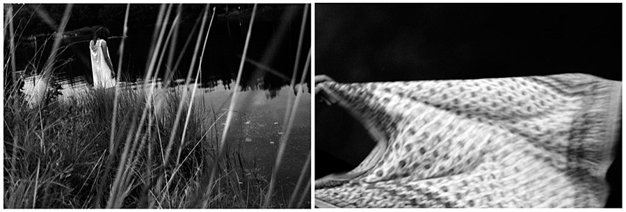 кошки мяукают звук шагов я издали ловлю