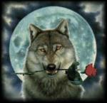 In loved Wolf