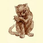 Greebo cat